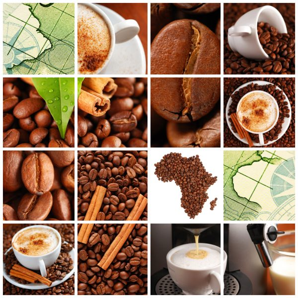 online course in coffee: an image of different coffee-themed tiles